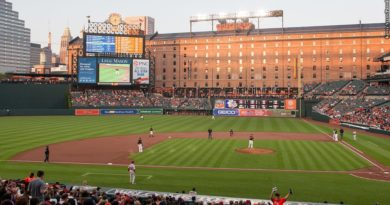 Oriole Park at Camden Yards, field