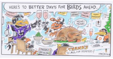 Ricig: here's to better days for birds ahead