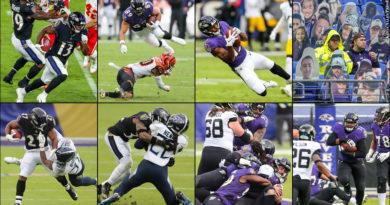 Ravens 2020 photos