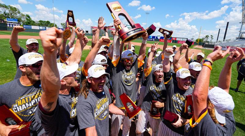 Salisbury baseball celebrating 2021 D-III national title